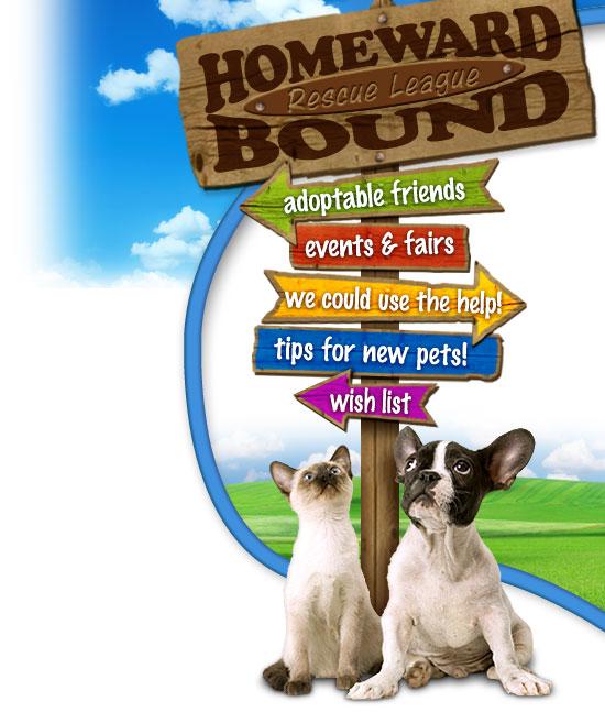 homeward bound pet rescue